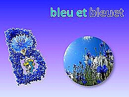 diaporama pps Bleu et bleuet