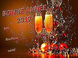 diaporama pps Bonne année 2017