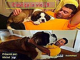 diaporama pps C'est ça la vie 19