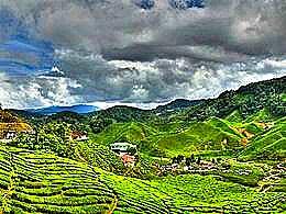 diaporama pps Cameron Highlands Malaysia