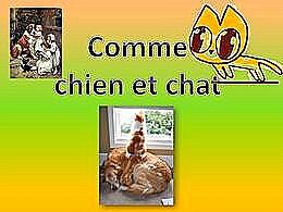 diaporama pps Comme chien et chat