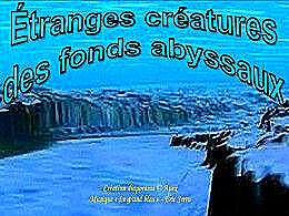 diaporama pps Créatures des fonds abyssaux