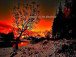 diaporama pps Cris d'amour et de douleur