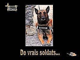 diaporama pps De vrais soldats