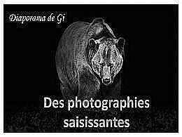 diaporama pps Des photographies saisissantes
