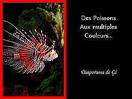 diaporama pps Des poissons aux multiples couleurs