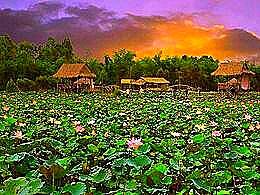 diaporama pps Đồng Tháp Mười – Vietnam