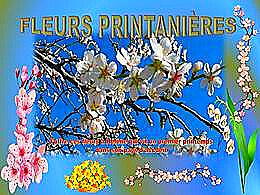 diaporama pps Fleurs printanières solamente