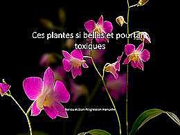 diaporama pps Fleurs toxiques