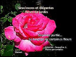 diaporama pps Gracieuses et élégantes fleurs du jardin