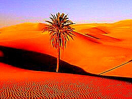 diaporama pps Irk asz-Szabbi Marocco