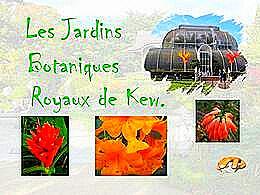 diaporama pps Jardins botaniques royaux de Kew