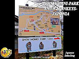 diaporama pps Jigokudani park snow monkeys japan