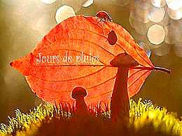 diaporama pps Jour de pluies