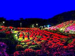 diaporama pps Komuroyama park japan