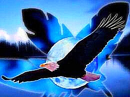 diaporama pps L'aigle noir