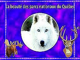 diaporama pps La beauté des parcs nationaux du Québec