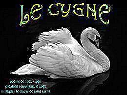 diaporama pps Le cygne