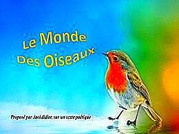 diaporama pps Le monde des oiseaux