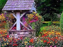 diaporama pps Le puits et les fleurs