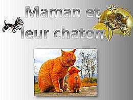 diaporama pps Maman et leur chaton