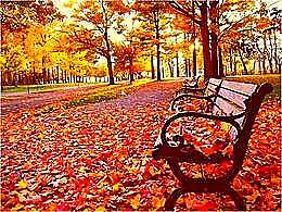 diaporama pps Nature d'automne