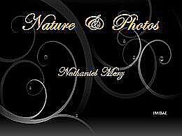 diaporama pps Nature et photos – Nathaniel Merz