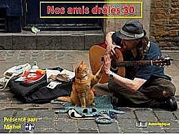 diaporama pps Nos amis drôles 30