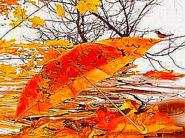 diaporama pps Pluie d'automne