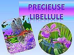 diaporama pps Précieuse libellule