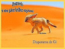 diaporama pps Renards 7 des plus belles espèces