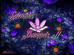 diaporama pps Splendides bouquets II