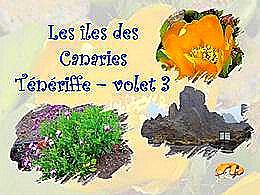 diaporama pps Tenerife 3 – Ile des Canaries