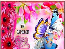 diaporama pps Un papillon fou flotte dans les airs