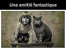 diaporama pps Une amitié fantastique