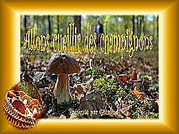 diaporama pps Allons cueillir des champignons