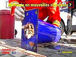 diaporama pps Animaux en mauvaises situations 7