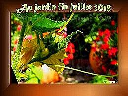 diaporama pps Au jardin fin Juillet 2018