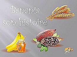 diaporama pps Banania son histoire