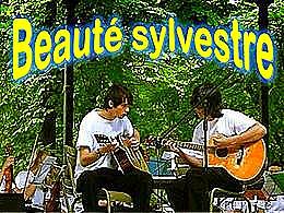 diaporama pps Beauté Sylvestre