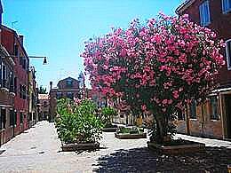 diaporama pps Burano – Italie