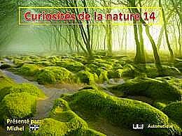 diaporama pps Curiosités de la nature 14