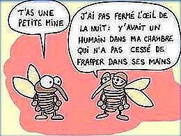 diaporama pps De l'humour 5