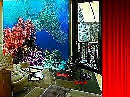diaporama pps Monde des coraux et fonds marins 2
