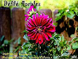 diaporama pps Défilé floral