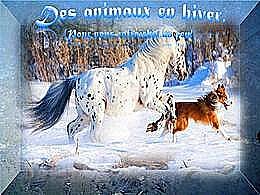 diaporama pps Des animaux en hiver