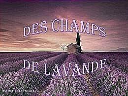diaporama pps Des champs de lavande
