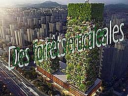 diaporama pps Des forêts verticales