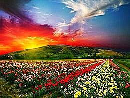 diaporama pps Divins soirs de printemps
