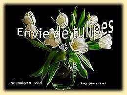 diaporama pps Envie de tulipes